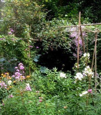 tuin aug 2016