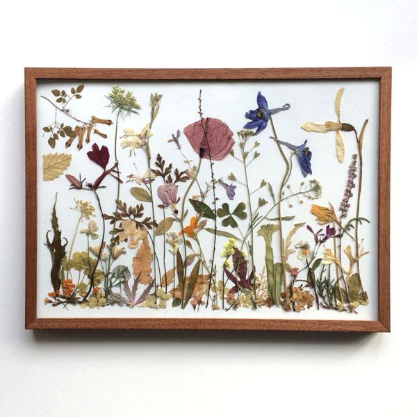 Flowermeadow on paper, tuin van Judith