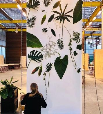 Green Wallpaper ShowUp