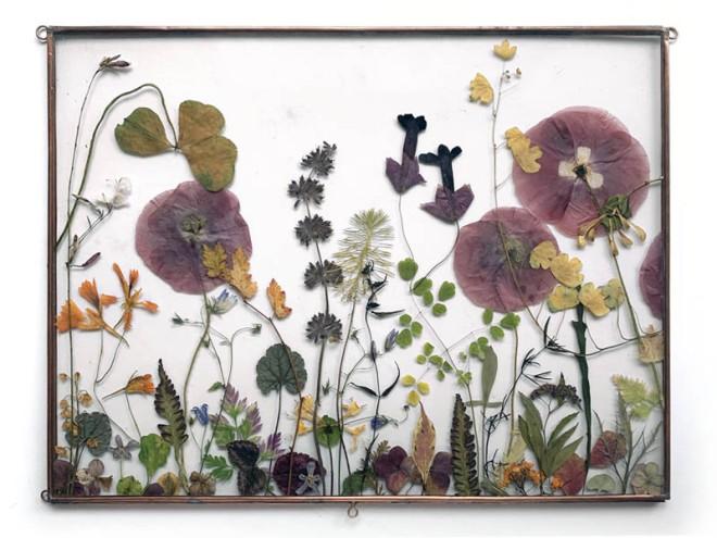 Tuin van Judith Flower meadow