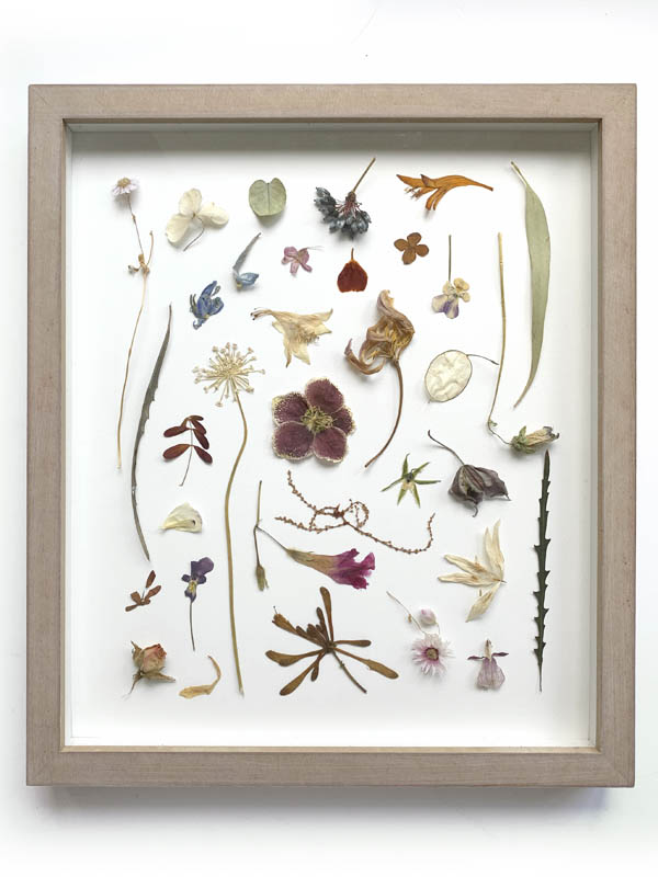Dried 3D Flowers in wooden frame by Tuin van Judith