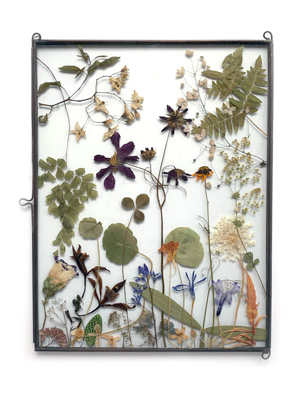 Medium size flower frame by tuinvanjudith